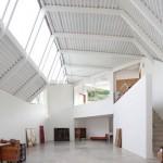 Casa cu acoperis verde, versiunea hibrida