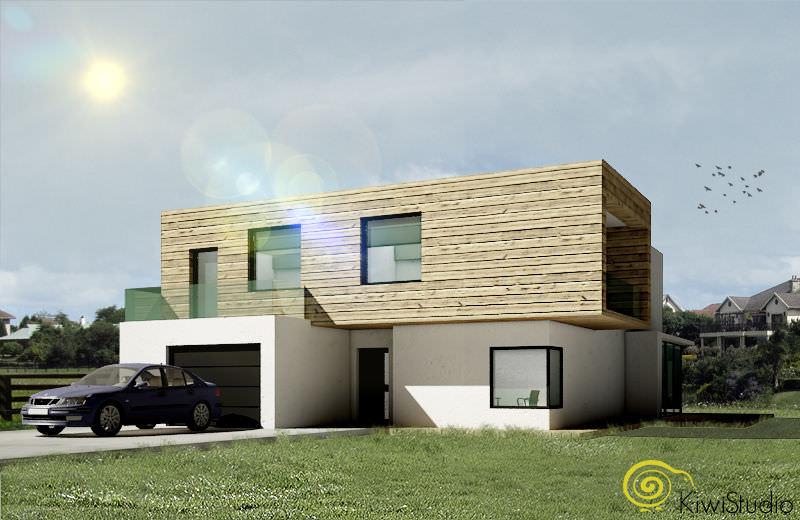 Arhitectura casa fatada lemn