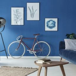 albastru clasic e culoarea anului 2020 pantone living