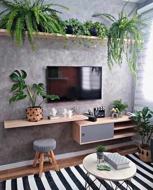 design interior living accente de culoare plante verzi